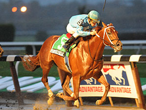 Dominguez Bags Four Stakes at Belmont