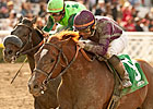 Steve Haskin&#39;s Derby Dozen - 3/12/2013