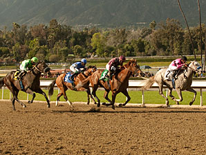 Hear the Ghost wins the 2013 San Felipe.