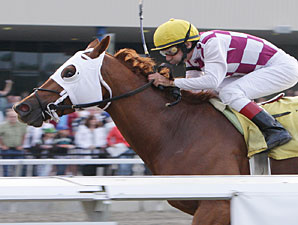 Heart of a King wins the 2009 Tall Ships Stakes.