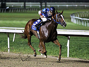Heatseeker Sharon wins the 2015 Louisiana Legends Distaff Stakes.