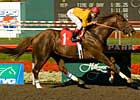 Heatseeker Jets to Californian Victory