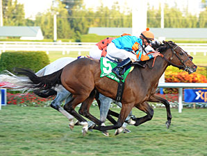 Heavenly Landing, 19-1, Takes Marshua's River
