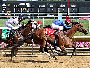 Heaven's Runway wins the 2015 Hockessin Stakes.