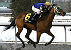 Turfway&#39;s Bourbonette Draws Ten 3YO Fillies