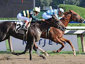 Hello Broadway beats Imperial Council in a maiden race at Saratoga on Aug. 30, 2008.