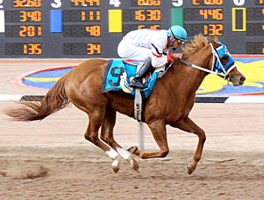 Hennessy Road wins the 2012 Copper Top Futurity - Fillies.