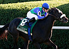 Herboriste Mows Down Dowager Rivals