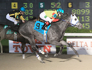 Hero Force wins the Night Prince Stakes.