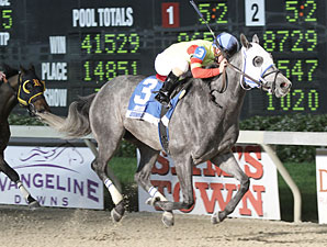Hero Force wins the 2013 Pelican Stakes.
