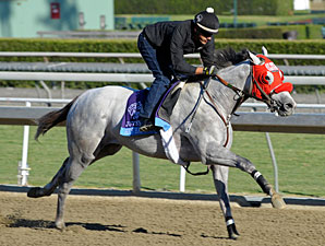 He's Had Enough works at Santa Anita 10/29/2012.