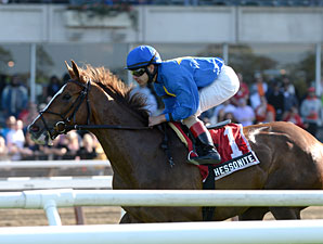Hessonite Tops Sheepshead Bay Stakes Lineup