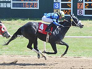 Heykittykittykitty wins the Oklahoma Stallion Fillies Division Stakes.
