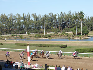 Court Rules, Hialeah to Move Ahead With Slots