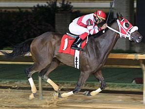 Hidden Canyon wins the 2013 Robert G. Leavitt Memorial Stakes.