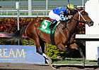 Hilda&#39;s Passion Top Choice in Humana Distaff