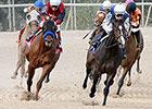 Hillbilly Royalty Seeks Iowa Derby Crown