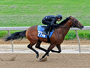 War Front Colt Tops Strong Midlantic Opener