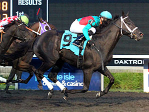 Hogy Stays Hot With Presque Isle Mile Victory