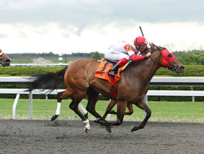 Holiday for Kitten wins the 2011 Giant's Causeway.