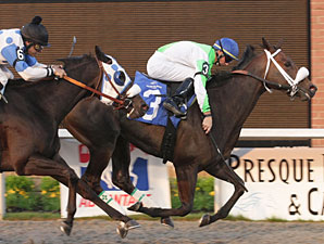 Holly's Way wins the 2009 Malvern Rose Stakes.