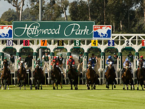 Double-Digit Declines at Hollywood Park