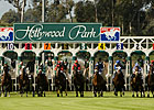 Hollywood Park Cancels Thursday Racing