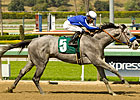 Haskin&#39;s Derby Trail: 04/06/12