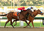 Filly&#39;s Seconditis Can End in Rancho Bernardo