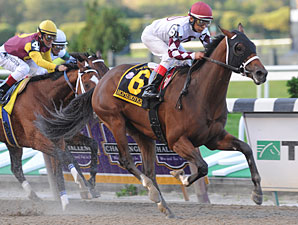 Gulfstream Race Could Yield Derby Prospects