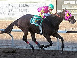Homerun Berti wins the 2013 KLAQ Handicap.