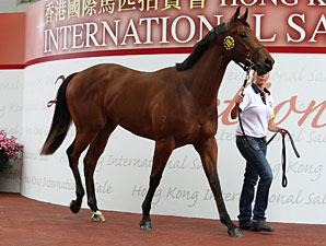 Average Rises 27.5% at Hong Kong Sale