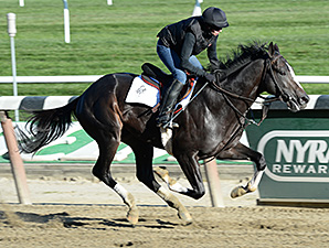 Honor Code to Bypass Rebel, Run at Gulfstream