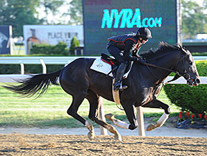 Honor Code - Belmont Park, May 22, 2015.