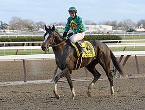 Honor Code Top Horse in Future Derby Pool 2