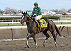 Honor Code Entered Saturday at Aqueduct