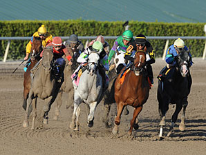 Honorable Dillon wins the 2013 Hutcheson Stakes.