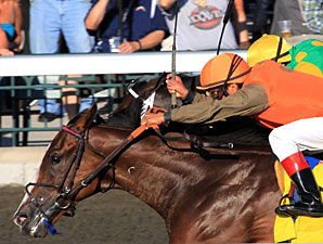 World Traveler Hoofit Tries BC Turf Sprint