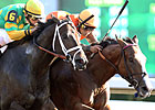Wide-Open Phoenix Offers Breeders' Cup Shot