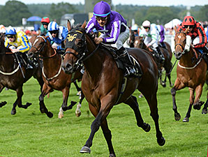 Hootenanny wins the 2014 Windsor Castle Stakes.