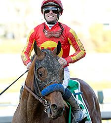 Hoppertunity wins the 2016 San Antonio Stakes.
