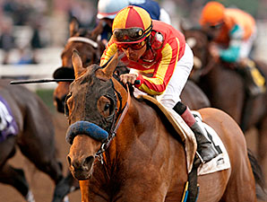 Hoppertunity wins the 2015 San Pasqual Stakes.