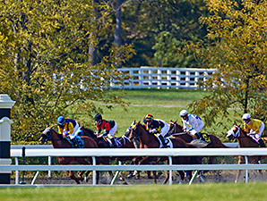 Keeneland Names New Track Superintendent