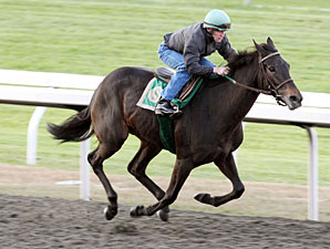Hot Cha Cha works at Keeneland on October 23, 2010.
