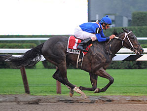 Hot Dixie Chick Romps in Schuylerville