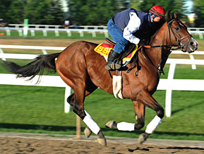 Hotep the One to Beat in Queen's Plate