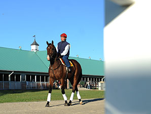 Hotep at Woodbine on June 30, 2010.