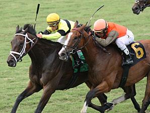 Hudson Steele wins the 2013 Da Hoss Stakes.
