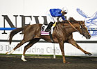 Hunter&#39;s Light Clear Maktoum Challenge Winner