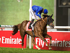 Hunter's Light wins the 2015 Jebel Hatta.